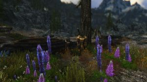 Too colourful for Skyrim by lupusmagus