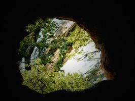 Natures Window by teresa-lynn