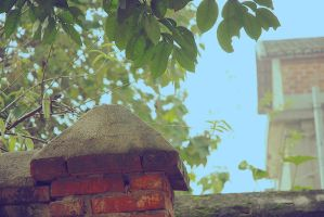Corner of Old House2 by dyefish