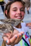 Two Sparrows and a Smile by DrNoVodka