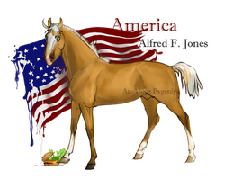 Horse Hetalia: America by Moon-illusion