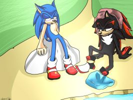 -Sonic and Shadow- Rest by the pond by ExcelsiorTheHedgehog