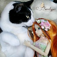 Felix and Nobledoll Raspberry by Atelier-Cynamon