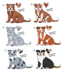 Border collie point adoptables 2 by DisgracfulHarmony