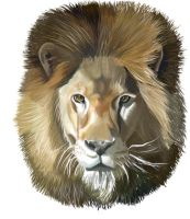Lion by e5ther