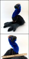 Cassowary Plush by Zercon