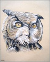 Eagle owl by Verenique