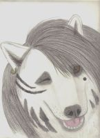 Ashley Purdy as a wolf by wolvenwillow