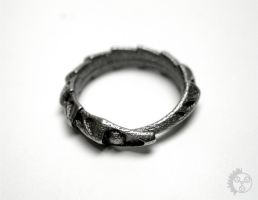 Carapace Ring - Side by improbablecog