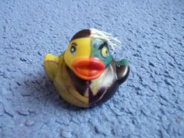 Two-face duck by ShayeraLee
