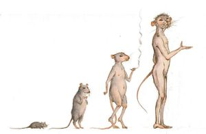 Evolution by Gogolle