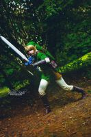 Link - The Legend Of Zelda : The Twilight Princess by ShashinKaihi