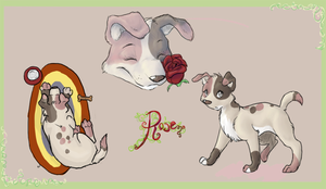 Rose Ref by colonel-strawberry