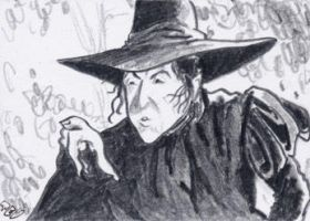 TC - Wicked Witch by tdastick