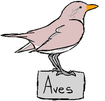 Aves Button by AchievementHuntress
