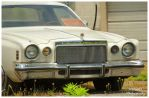 Cordoba Grille and Bumper by TheMan268