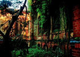 Ranken der Zeit by Nature-of-Decay