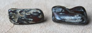 Petrified Wood Post Earrings (Red) by lupagreenwolf