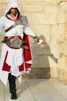 AC Brotherhood- Ezio Cosplay 9 by LadyBad