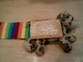 I made a NyanCat. Now Love Me. by KattyCobra