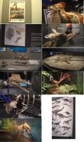 New prehistoric exhibition by Hyrotrioskjan