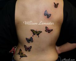 Butterflies - back by lemaster99705