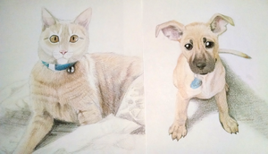 Portraits of Pets by TheMeekWarrior