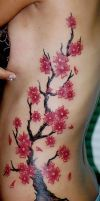 Cherry Blossom Tree by AstroTatts