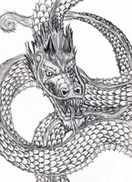 Chinese Dragon Tattoo Concept by SteinZupancic