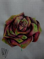 Rose Power by Painter-One