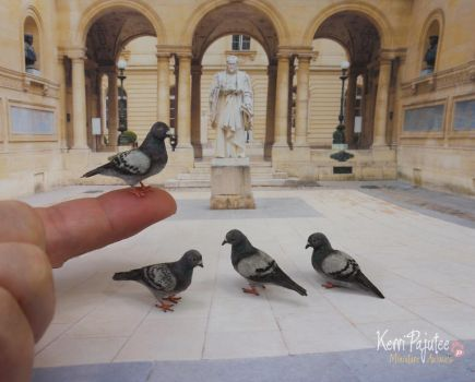 Miniature Pigeon sculptures (without the poop)... by Pajutee