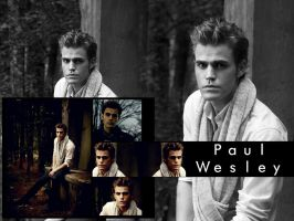 Paul Wesley Wallpaper by me969