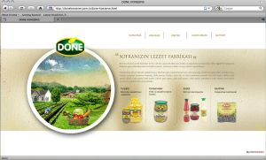 Done Food Co. Web Design by grafiket