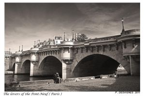 the lovers of the Pont-Neuf by bracketting94