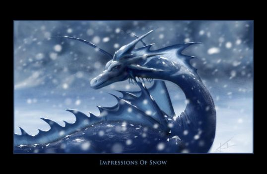 Impressions of Snow by halcyondf
