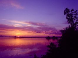 Purple And Pink Sky by Rainbow826