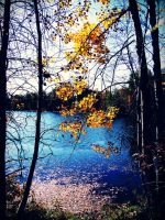 Autumn Lake by evelynrosalia