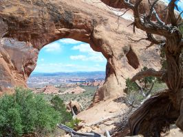 window on the world by orngeturtl