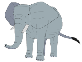 African Elephant by kylgrv