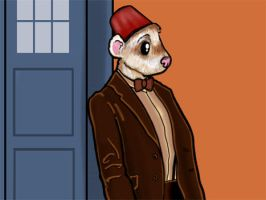 Doctor Who Ferret -2 by Spirallee