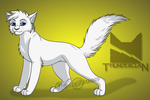CotC Serie - Cloudtail (ThunderClan Warrior) by Winterstream