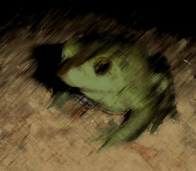 Frog by CrabTech