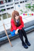 Toradora by wisely84