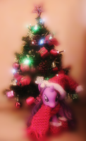 Twilight's ready for Christmas 01 by Misspokky