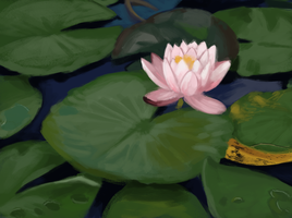 Daily Study #5: Lilies by Brainmatters