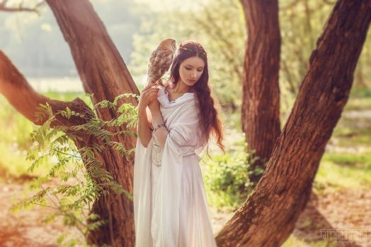 Elf and owlet (1) by Swan-Lake