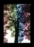 natures_colors by mandyy123