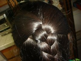 I braided my partial ponytail by Magic-Kristina-KW