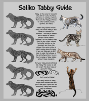 Saliko Pattern Guide - Tabby by Saliko-Archive