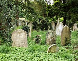Southampton Old Cemetery 26 by OghamMoon